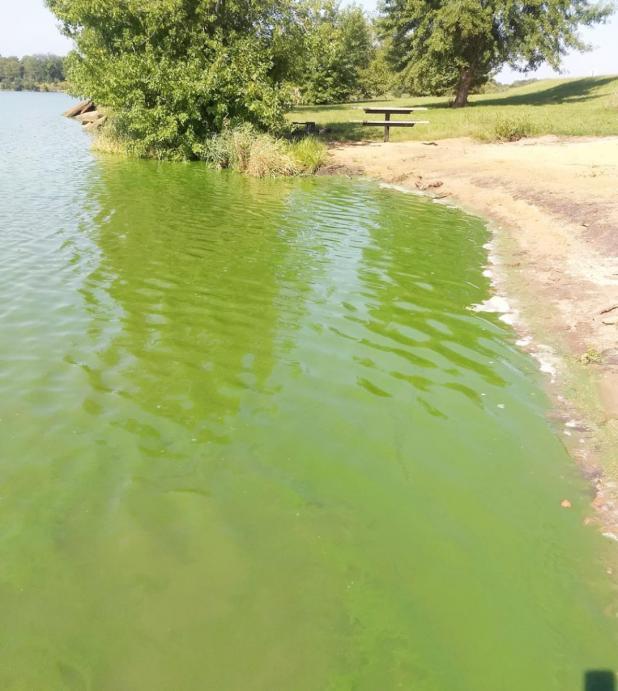 Kirkman's Cove on Health Alert Effective July 10